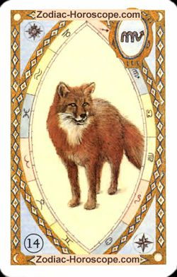 The fox, monthly Love and Health horoscope January Taurus