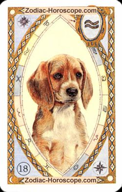 The dog, monthly Love and Health horoscope January Taurus