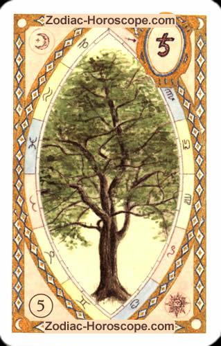 The tree Single love horoscope