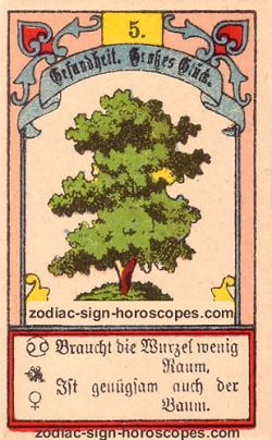 The tree, monthly Taurus horoscope April