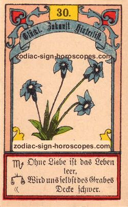 The lily, monthly Taurus horoscope April